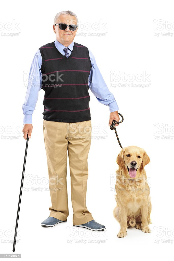 Blind person holding a walking stick and dog stock photo