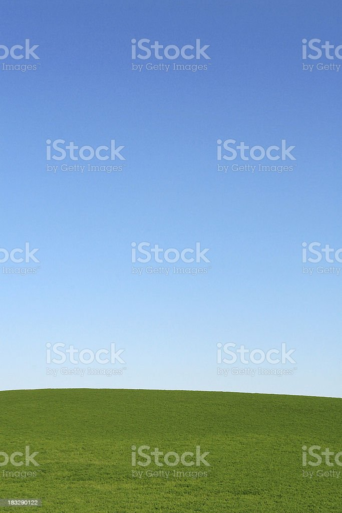 Blissful Field royalty-free stock photo