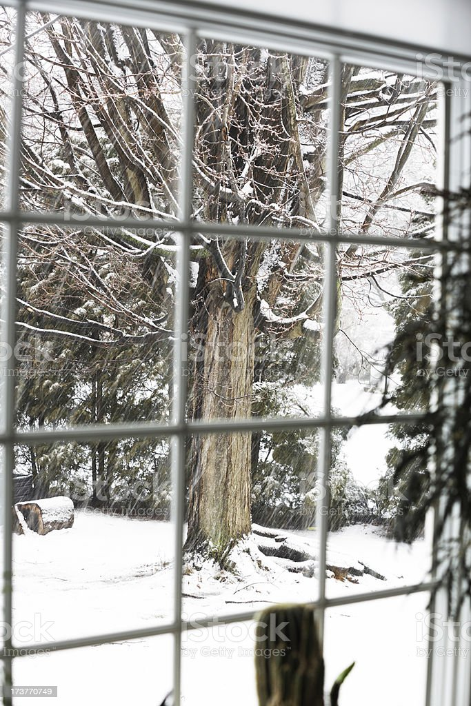 Blizzard Blur Bay Window stock photo