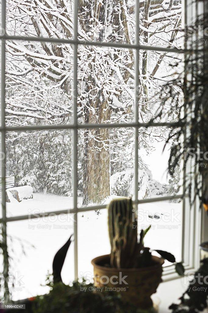 Blizzard Flying Snow Bay Window stock photo