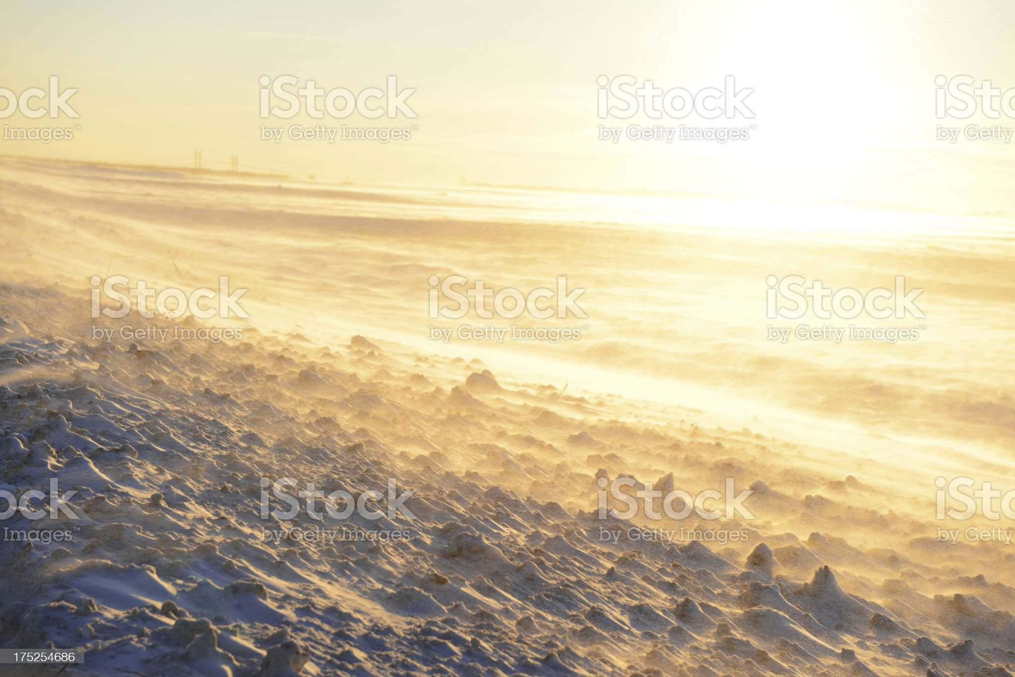 blizzard in the field royalty-free stock photo