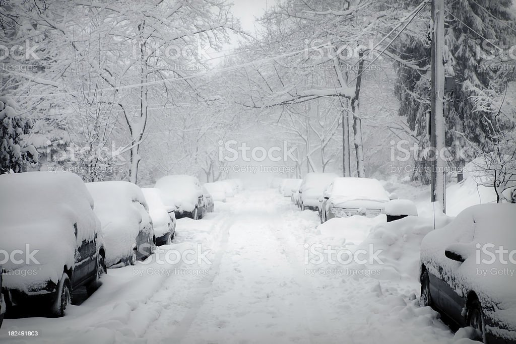 Blizzard stock photo