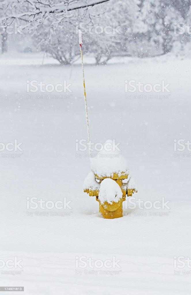 Blizzard Snowcapped Fire Hydrant stock photo
