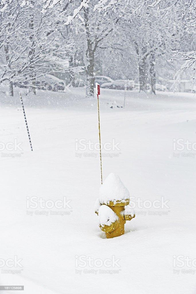 Blizzard Street Corner Fire Hydrant stock photo