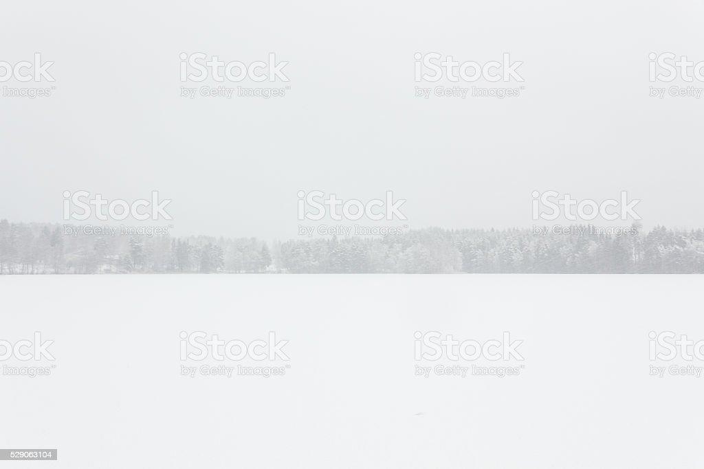 Blizzard winter landscape at frozen lake stock photo