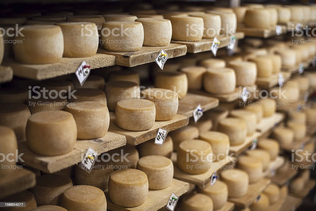 Blocks of milk cheeses on rows of shelves stock photo