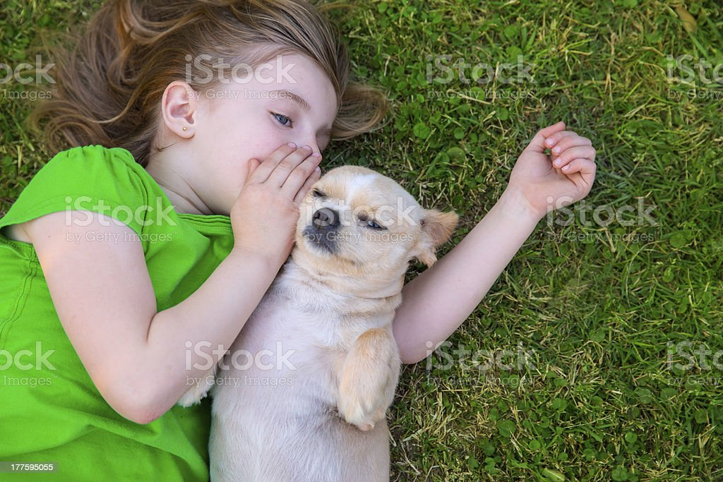 Blond happy girl with her chihuahua doggy portrait stock photo