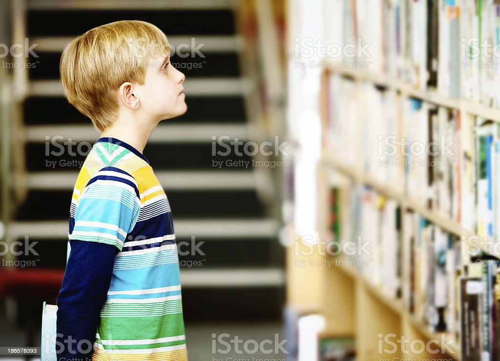 Blond schoolboy concentrates on choosing the perfect book in library stock photo