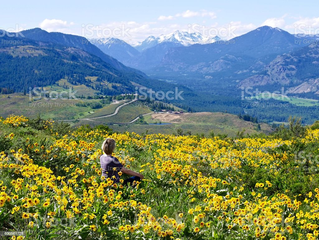 Blond Woman Sitting among Yellow Flowers. stock photo