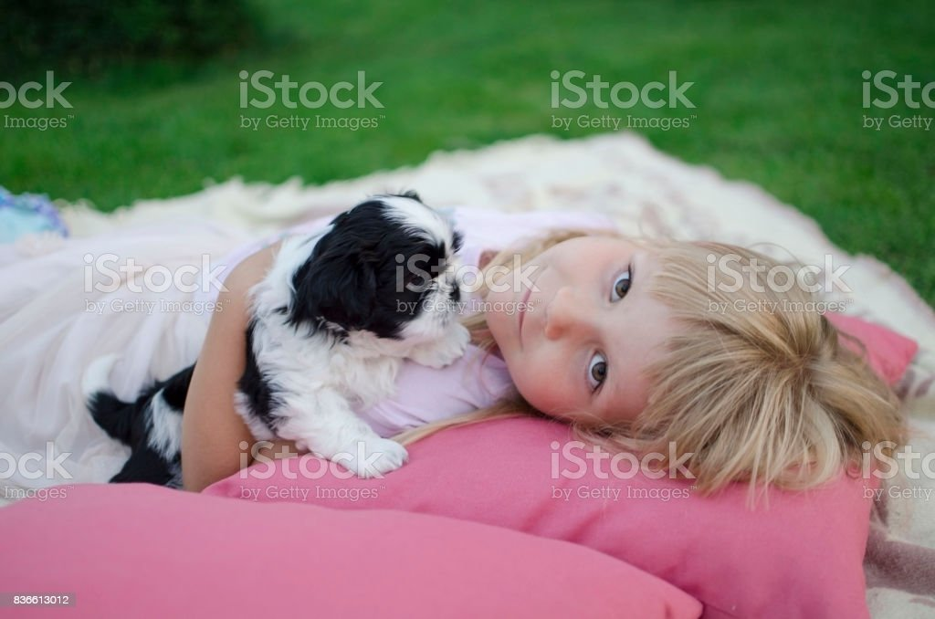 Blonde girl four years old lying on the pillows with puppy stock photo