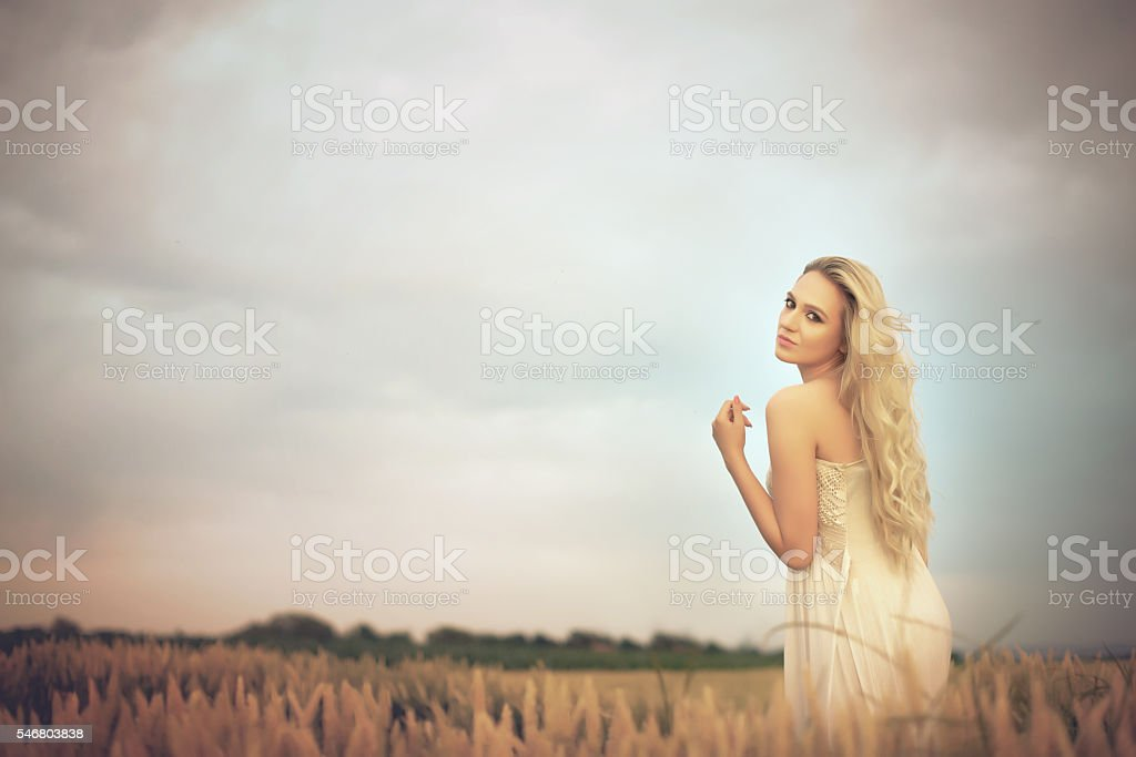 Blonde in the wheat stock photo
