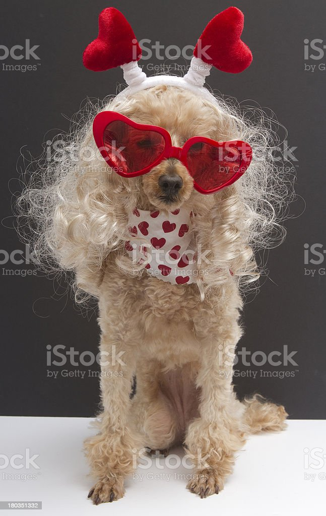 Blonde with Hearts royalty-free stock photo