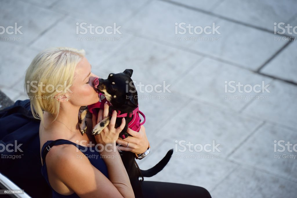 Blonde woman on Sergels Torg, with dog stock photo