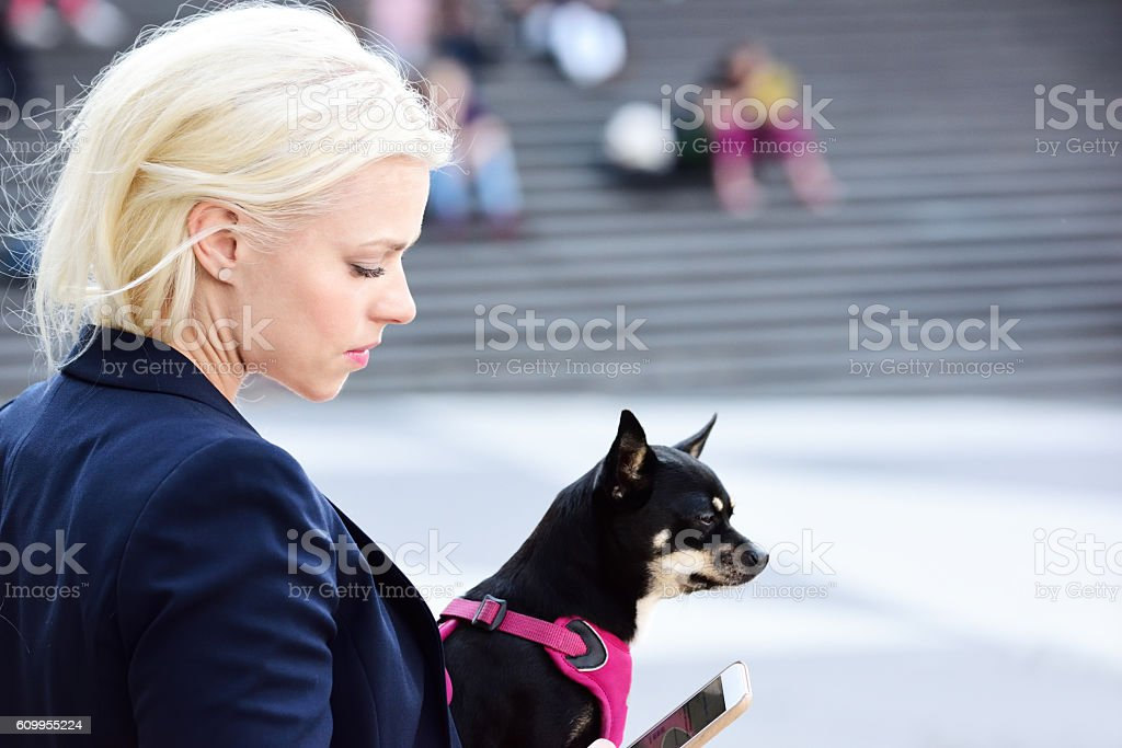 Blonde woman Sergels Torg, with dog, office clothes/suit, using phone stock photo