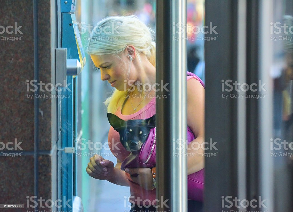 Blonde woman using ATM, carrying dog in bag stock photo