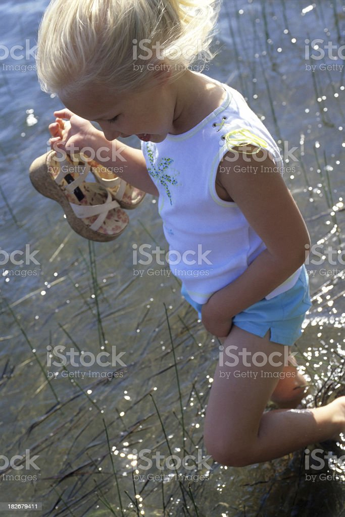 blondie goes wading, #2 stock photo