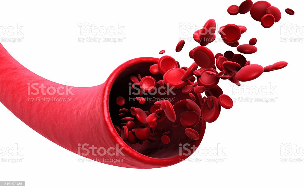 Blood Cells and vein stock photo