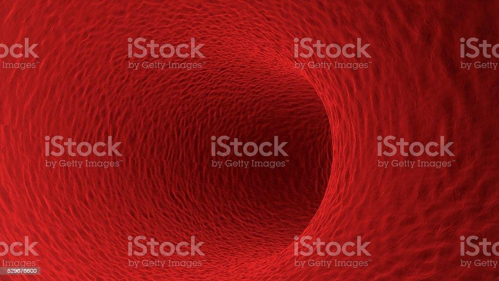 Blood vessel. 3D Illustration stock photo