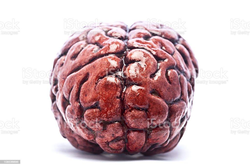 Bloody Brain on White royalty-free stock photo
