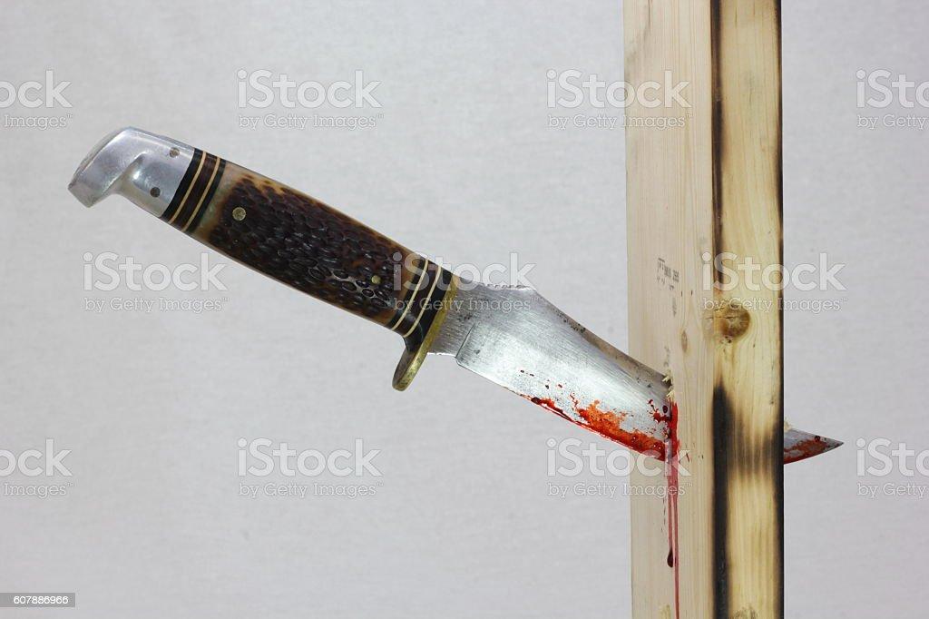 Bloody Knife Stuff in a Board stock photo