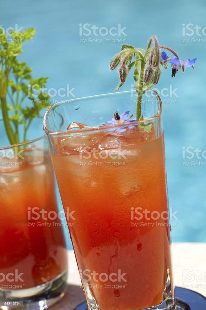 Bloody Mary cocktail royalty-free stock photo