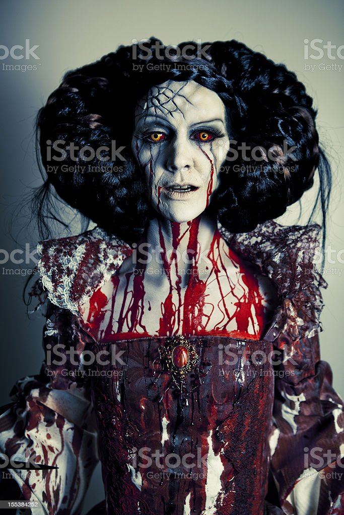 Bloody Mary royalty-free stock photo