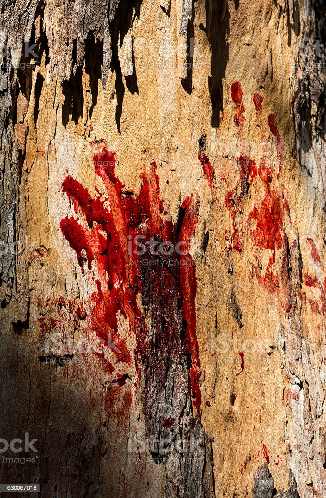 Bloody palm stock photo