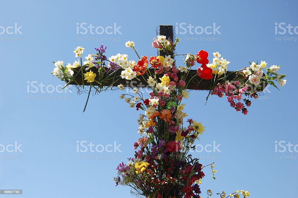Blooming cross royalty-free stock photo