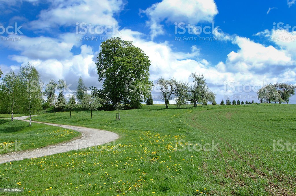 Blooming rural countryside in spring royalty-free stock photo