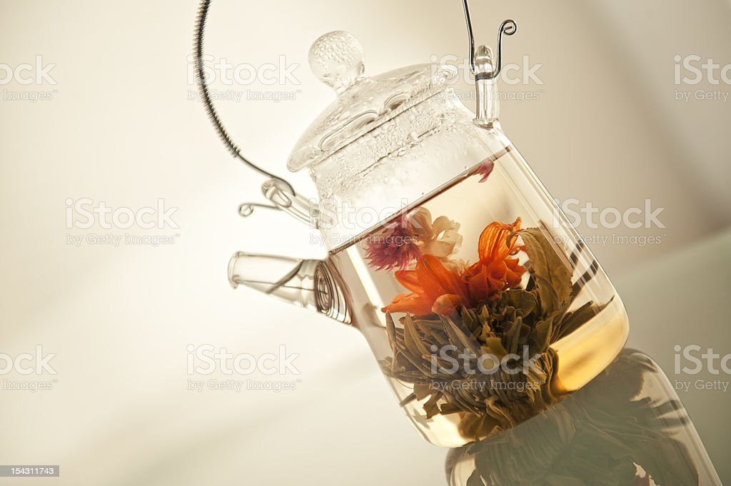 blooming tea in pot royalty-free stock photo