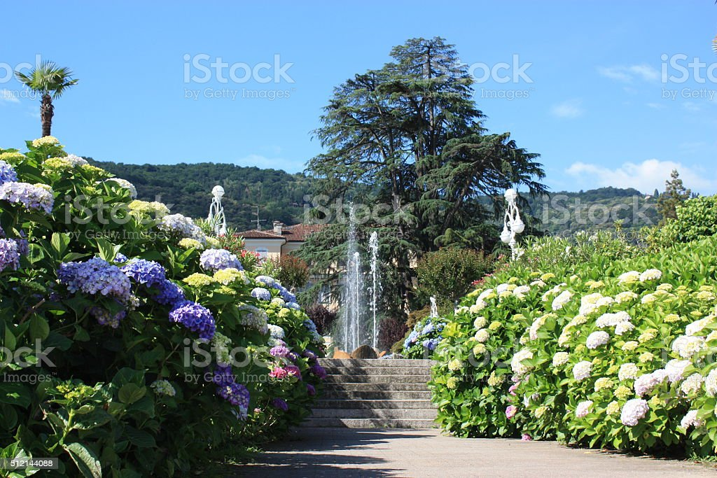 Blooming waterfront Stresa at Lake Maggiore, Piedmont Italy stock photo