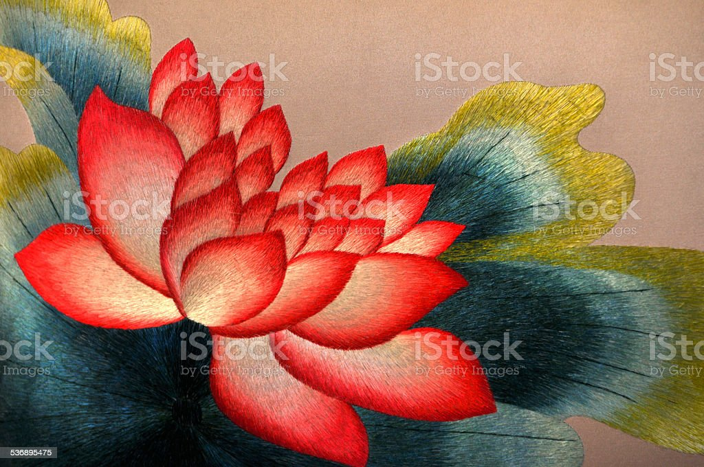 Blossom lotus flower stock photo