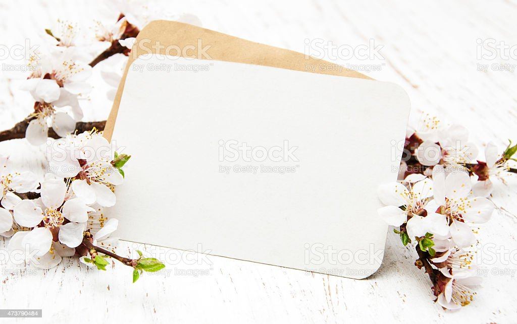 blossom with card stock photo