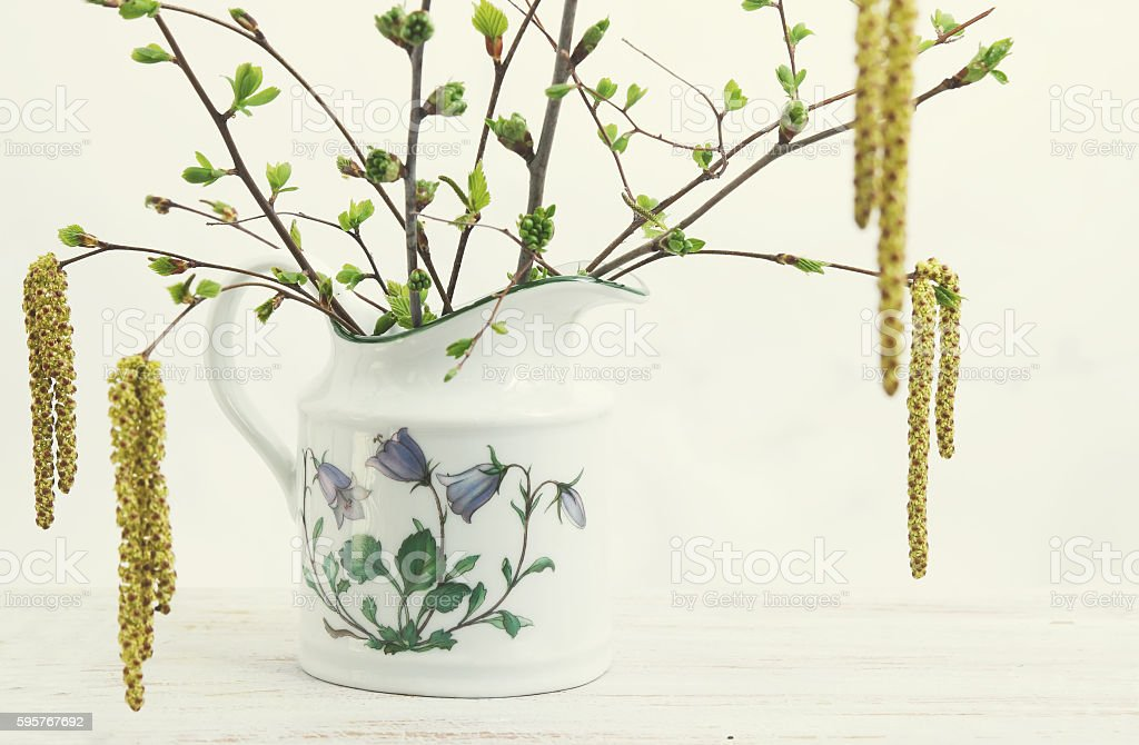 Blossoming branches of birch and cherry stock photo