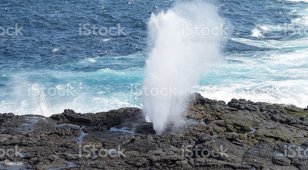 Blowhole at Suarez Point on Galapagos royalty-free stock photo
