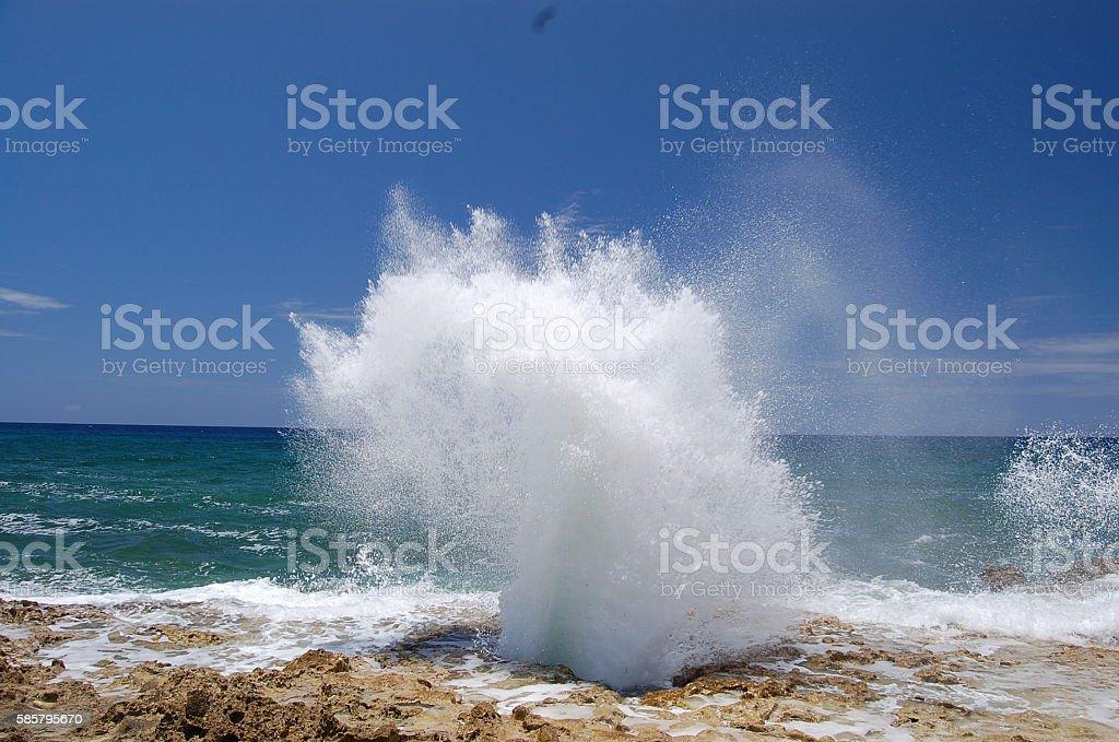 Blowhole stock photo