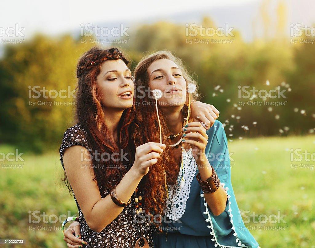 Blowing a dandelion stock photo