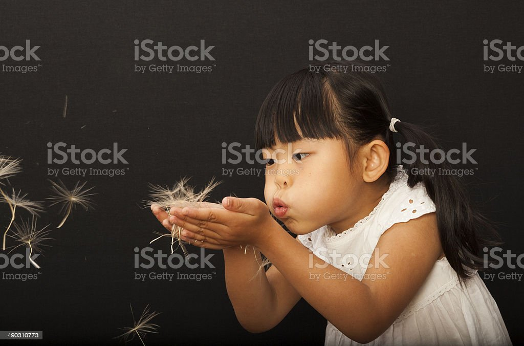 Blowing a flower for a wish royalty-free stock photo