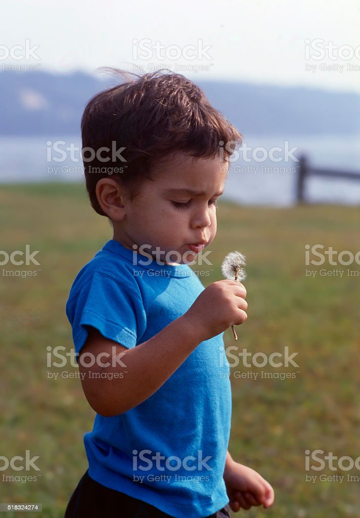 blowing boy stock photo