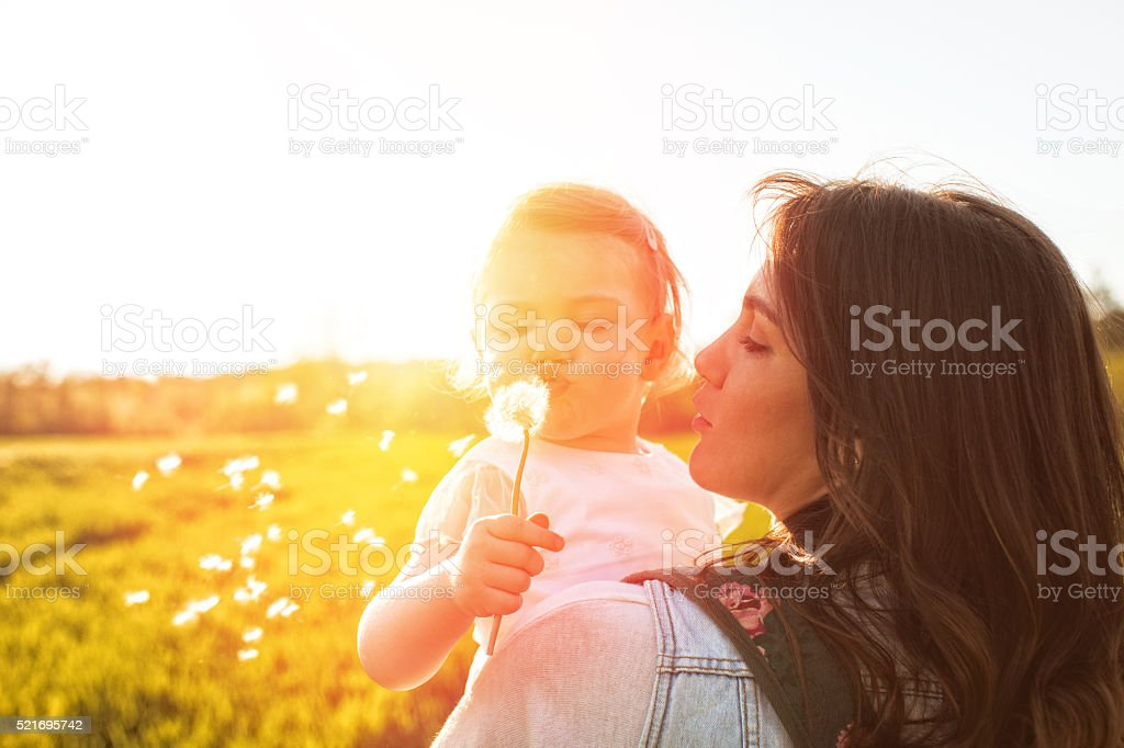 Blowing dandelion stock photo