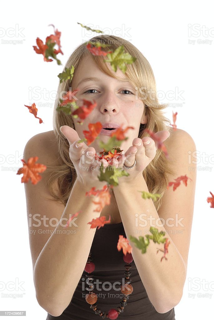Blowing leaves royalty-free stock photo