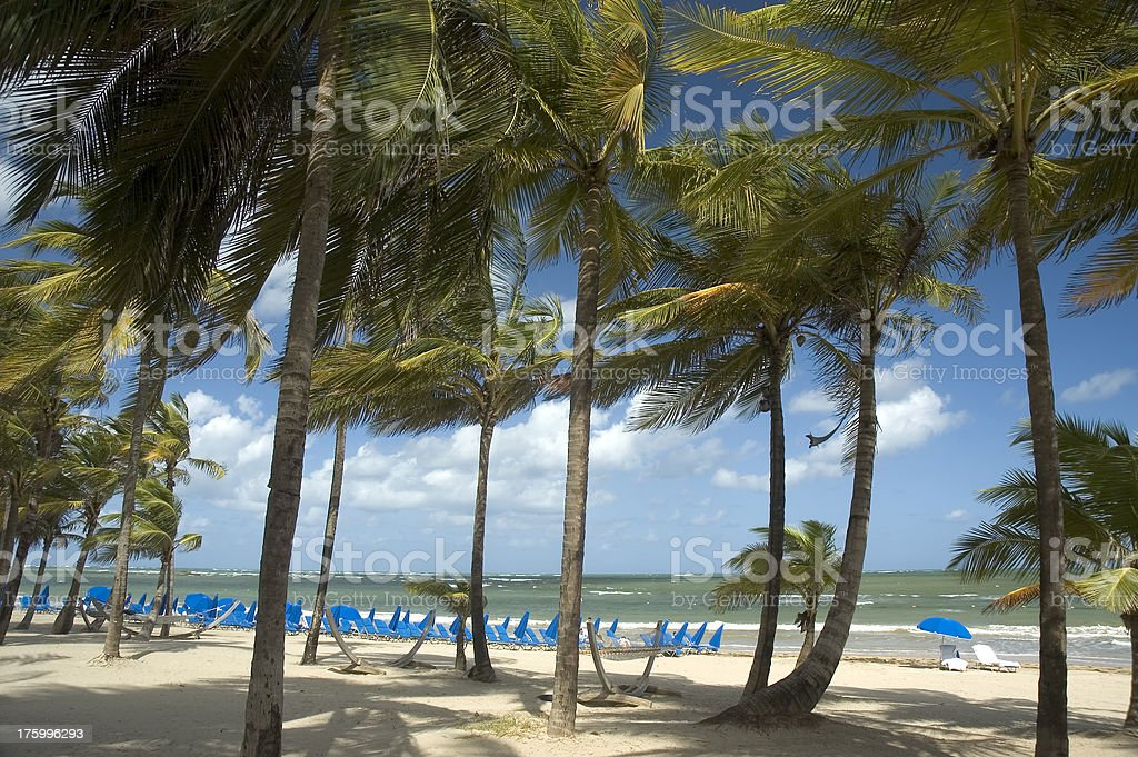 Blowing Palms Resort stock photo