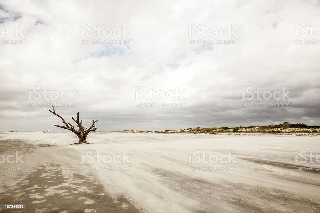 Blowing Sand royalty-free stock photo