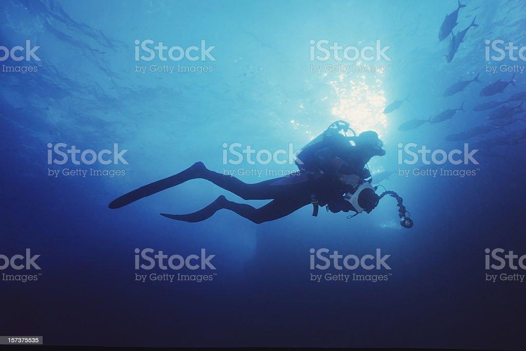Blue Adventure royalty-free stock photo