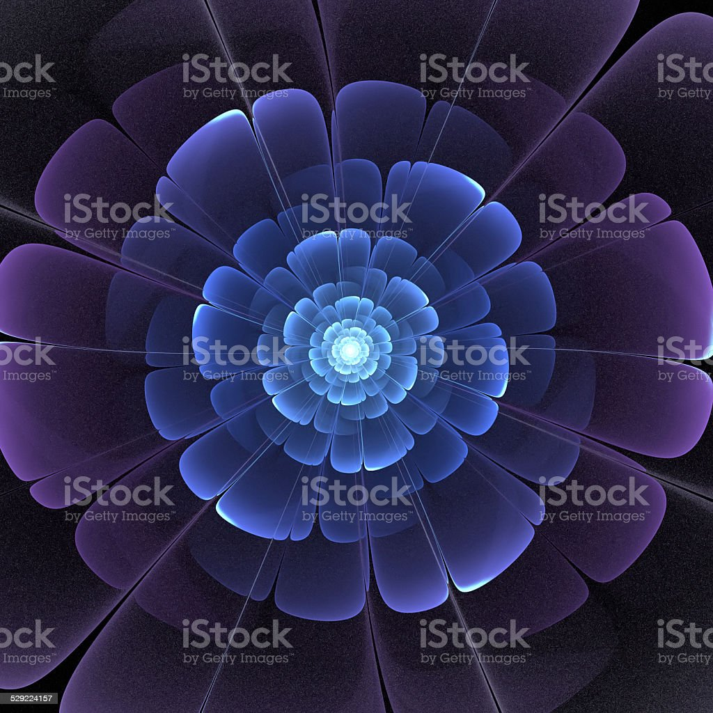 blue and black transparent 3d fractal abstract flower stock photo