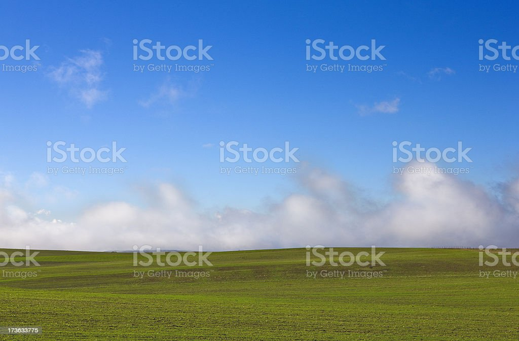 Blue and green field landscape stock photo