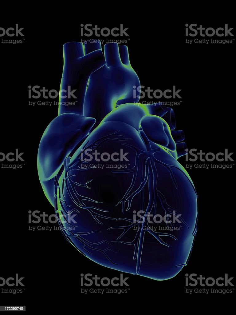 Blue and green human heart on black background stock photo