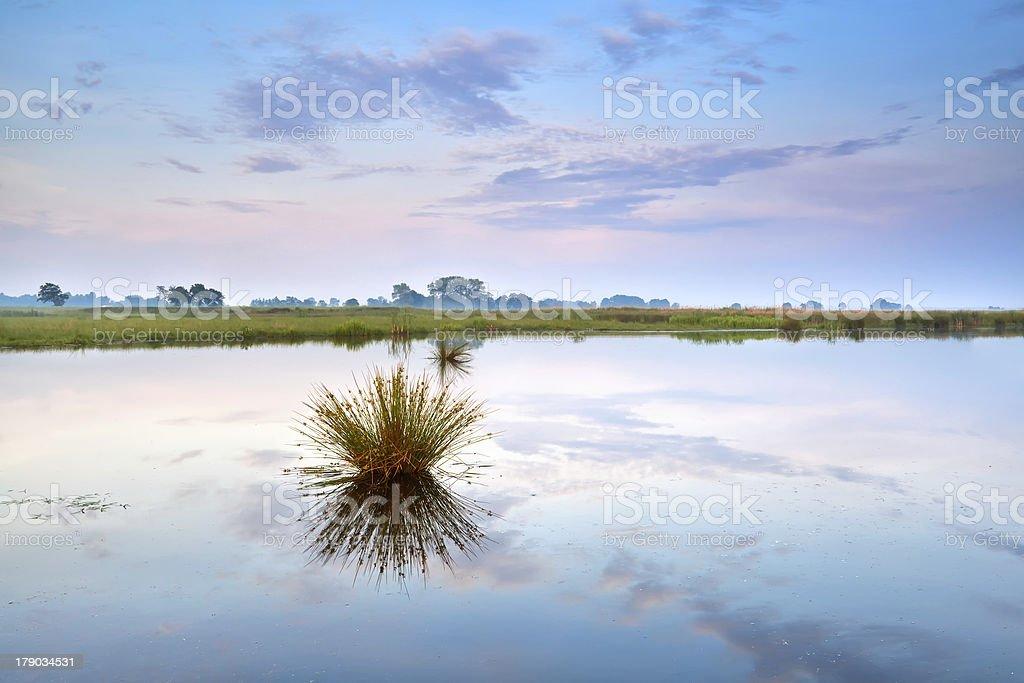 blue and pink sunrise on lake royalty-free stock photo