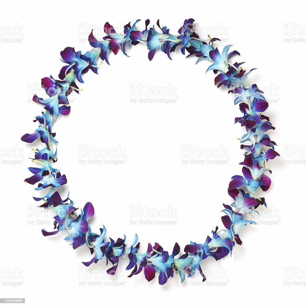 blue and purple hawaiian lei stock photo