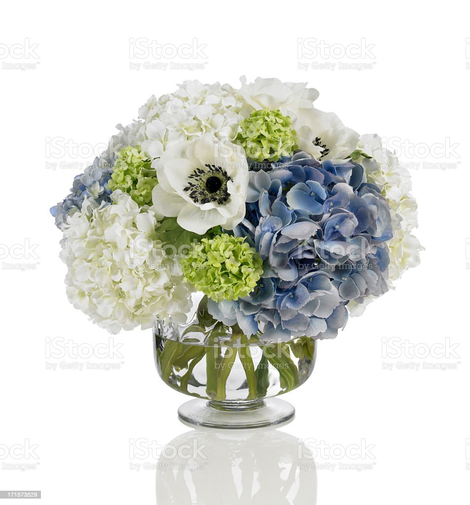 Blue and white hydrangea bouquet with poppies on white background stock photo